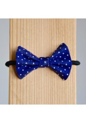 Mašlička modrá s puntíky