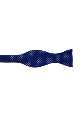 Modrý pánský motýlek s puntíky